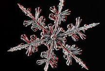 ●● Snowflakes