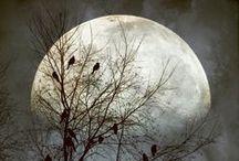 ●● Moon