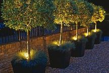 Outdoor Lighting / Great ideas for lighting for outside your home.