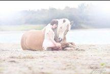 Click A Trick / Tricktraining, Clickertraining, Horse Training, Horse Tricks, Horse Quotes, Photography, Fantasy