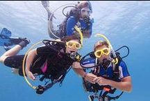 SCUBA - Diving / SCUBA - Diving - Snorkeling  , love swimming and underwater sports..    IF YOU WANT TO JOIN THIS BOARD SEND ME A REQUEST..