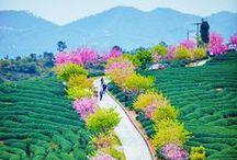 Enchanting China / Discover Enchanting China with SNA Tours.