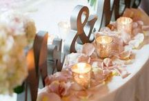 Chic + Modern Wedding / A Inspirational design to help visualize a Chic and Modern wedding and reception for a group of 120 guest.
