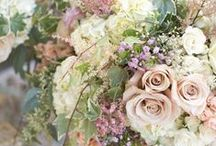•EVERYTHING FLORAL•• / BEAUTIFUL FLORA