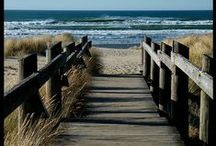 Florida's East Central coast / Sights and activities near me.  / by Pat Curry