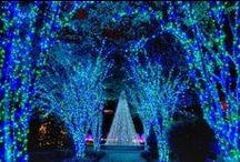 All the Beautiful lights / by Marcie Goforth Wood