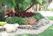 Landscape ideas / by Marcie Goforth Wood