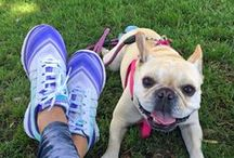 #PetsofSkechers / by SKECHERS USA