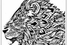 Lions / Line art and colouring sheets dedicated to Lions