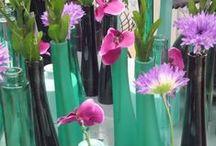 PRIMAVERA 2014 EN VLM / La sección de decoración se llena de color en Viveros la Mezquita