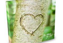 Canvas Art / Korte, mooie en inspirerende teksten welke worden versterkt door artistieke foto's die op het canvas volledig tot uitdrukking komen. Een lieve en complimenteuze boodschap om zowel in ontvangst te nemen als cadeau te doen.    verkrijgbaar voor € 5.95 bij www.feelingsonline.nl