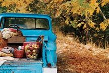 Granny Loves Autumn Picnic / Het meest kleurrijke seizoen is de herfst. De schitterende herfstkleuren in alle tonen van groen, geel, rood, oranje, paars en bruin. Een picknick midden in deze kleurenpracht......hoe fijn is dat?!