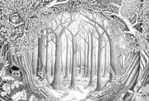 Puut / Trees