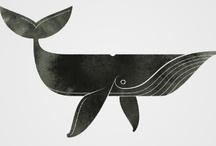 design---humpback whale