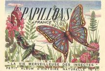DIY Vintage Butterflies / Butterflies and other insects