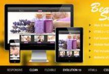 Website X5 Evolution 10 Templates 2014 / Website X5 templates for evolution 10