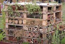 """Dla Ptaków owadów i innych gości )) / Tablica przedstawia proste ale bardzo ozdobne pomysły, które ciesząc oko """"zwabią"""" wszystko co dobre ;-) do naszego ogrodu"""
