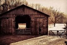 my barnyard