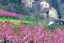 I love ITALY! ♥ / Italy, mood, streets...