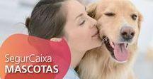#SegurCaixaMASCOTAS / Y  ahora también cuidaremos de lo que más te importa  seguros para mascotas ( perros y gatos) http://segurostorrelodones.es/otros-seguros/seguros-de-mascotas-adeslas/