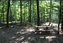 Izsákfai parkerdő / A Szombathelyi Erdészeti Zrt. jóvoltából elkészült Izsákfa határában a pihenőerdő. Tanösvény, játszótér, tűzrakóhelyek, forgatható táblajáték, esőbeálló várják a kirándulókat.