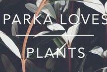 PARKA LOVES PLANTS