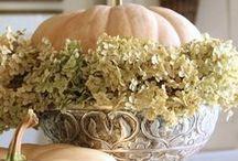 Fall / by ingrid bruers