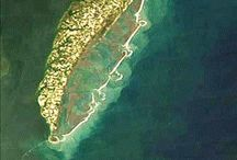 Virginia's Eastern Shore / Where I was born & raised ( with marsh mud between my toes and saltwater in my hair). Such great childhood memories. Family & friends still reside near the lower half of the peninsula. I grew up in Oyster Va. There is nothing better than growing up on the water .. I had both the Chesapeake Bay & the Atlantic Ocean in my backyard. / by Louise