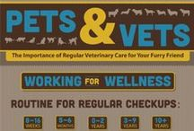 Wellness and Prevention / Keeping your pets healthy
