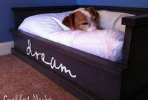 Dog beds / Dog beds
