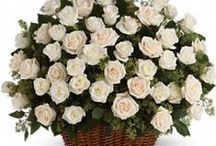 Sympathy Flowers / Let us know what you need for someone who needs a lot of love and care.