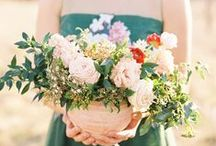 Wedding Flowers / Wedding Flowers / by BeautifulBlueBrides