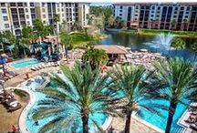 Destination: Florida / Create memories in the land of eternal summer and spring, with a concentration of more family-fun venues per square mile than anywhere else in the world.