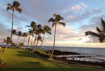 Destination: Hawai'i / Relax around some of the world's most inviting waters to soak up the best of Hawaiian beauty, activity and culture.