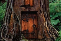 Ma cabane dans les arbres
