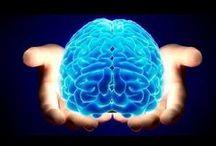 Neuroplasticity and other neuro stuff