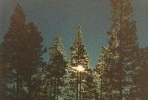 Into The Wild / Il est au sein des bois un charme solitaire, Un pur ravissement aux confins du désert, Et de douces présences où nul ne s'aventure Au bord de l'océan qui gronde et qui murmure Sans cesser d'aimer l'homme, j'adore la Nature