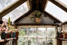 Garden | Greenhouse