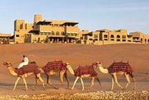 United Arab Emirates / Travel inspirations from 1001 nights