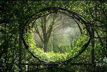 in the garden / by Debra Lee Pecora