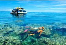 Best Family Holidays in Australia / Where to go, where to stay, what to do.