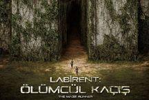 The Maze Runner ~ LabirentSerisi