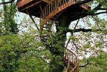 treehouses chiara