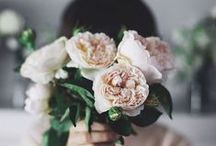 Faire fleurir.
