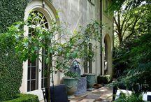 |  b a b y l o n  | / Hanging Gardens of Babylon, secret nooks, waterfalls, lush tropical palms and cascading flowers. Sarah x