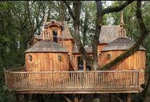 Cabanes dans les arbres / Les cabanes dans les arbres, un rêve d'enfant qui plait aux grands.