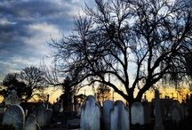 Cemeteries / by How to Plan a Funeral