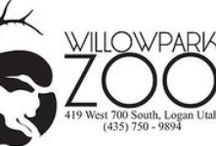 Willow Park Zoo, Logan, Utah / Logan's Willow Park Zoo offers many educational opportunities for children and teens; located at 419 West 700 South, Logan, Utah.