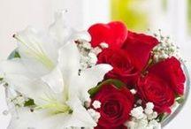 Ataşehir-cicek / Ataşehir Çiçekçi, Ataşehir Çiçek Gönder, Ataşehir Çiçekçilik, Ataşehir Çiçek Siparişi, Ataşehir Çiçek, Sipariş Tel: 0216 384 7038, Ataşehire çiçek göndermek istiyorsanız web sitemizi tıklayın..
