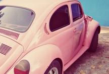 ❥ Love Bugs